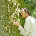 Waldbaden, Bäume umarmen, Mann umarmt Baum, Baum Meditation