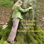 Bäume umarmen, Baum Meditation, Waldbaden, Krafquele Baum