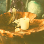 Kerze Salbei Feder in Holzschale