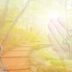 Selbstbewusst Deinen Weg gehen, 6 Schlüssel Übersicht