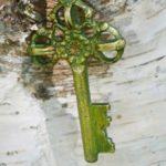 Schlüssel vor einer Birke, Header Bild