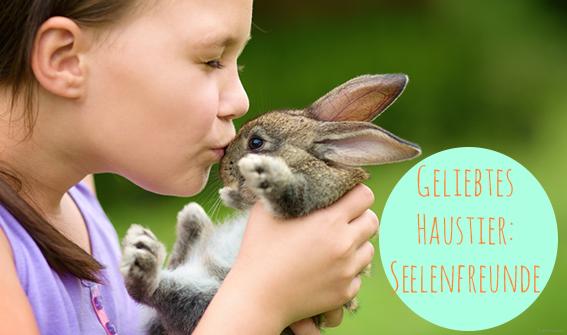 Hochsensibilität, vegan leben, Mitgefühl für Tiere